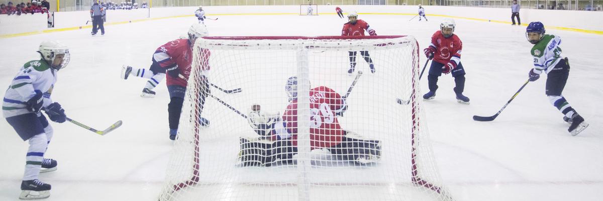 Межнациональный молодежный турнир по хоккею «Кубок Единства», посвященный Дню народного единства